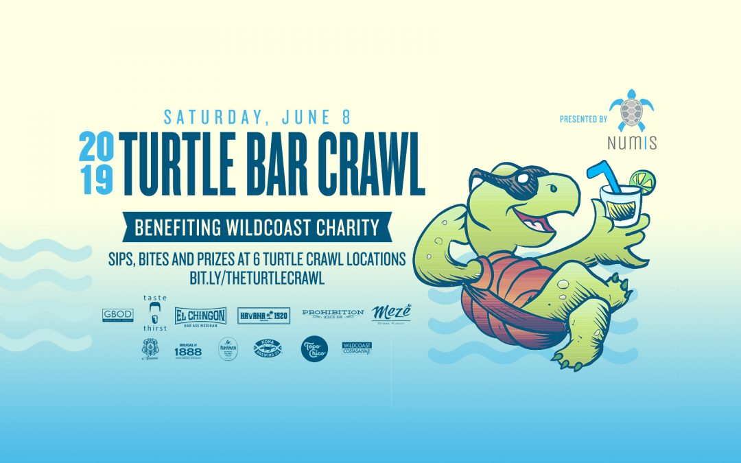 2019 Turtle Crawl